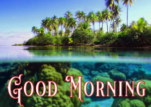 Nature Good Morning Image Pictures Download