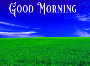 Nature Good Morning Image Wallpaper Pics for Facebook