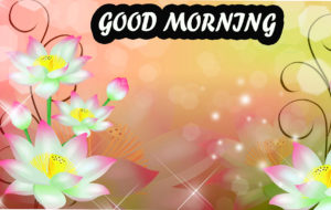 Beautiful Flower Good Morning Wishes Images Pictures Download